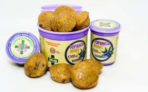 topanga_harvest_Blueberry-Muffins